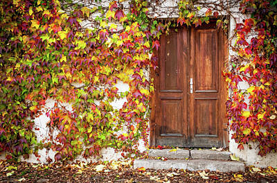 Photograph - Autumn Frame For Wooden Doorway. Prague 1 by Jenny Rainbow