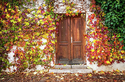 Photograph - Autumn Frame For Wooden Doorway. Prague by Jenny Rainbow