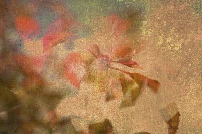 Autumn Fugue Art Print