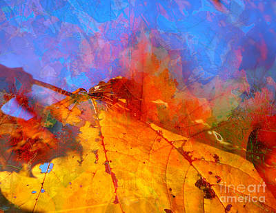 Fall Foliage Digital Art - Autumn Fusion 1 by Jeff Breiman