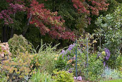 Anne Geddes Large Format Polaroids - Autumn Garden by Alan L Graham