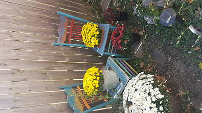 Photograph - Autumn Garden Chairs by Michelle Jacobs-anderson
