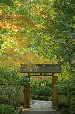 Photograph - Autumn Gate by Don Schwartz