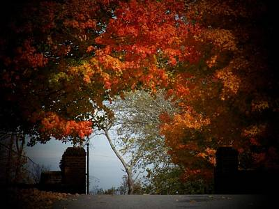 Photograph - Autumn Gate by Joyce Kimble Smith