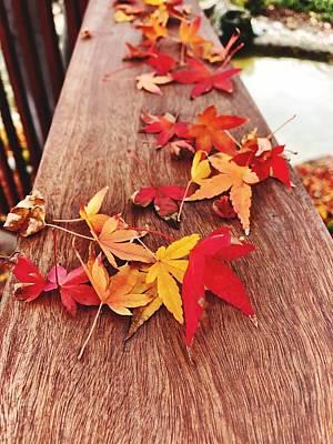 Photograph - Autumn Gathering  by Brad Hodges