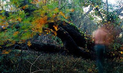 Autumn Ghost Art Print by Tim Nichols