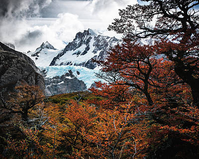 Photograph - Autumn Glacier by Ryan Weddle