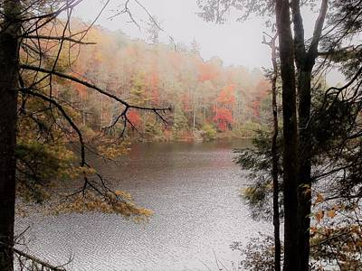 Photograph - Autumn by Glenda Barrett