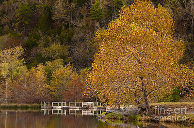 Art Print featuring the photograph Autumn Glory In Beaver's Bend by Tamyra Ayles