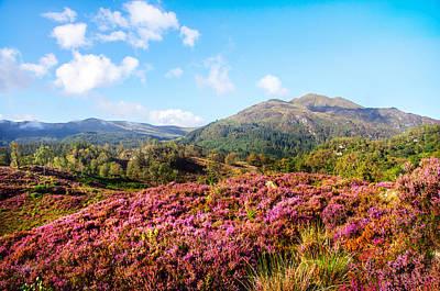 Photograph - Autumn Glory In Trossachs. Scotland by Jenny Rainbow