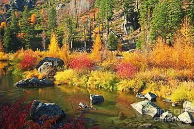 Photograph - Autumn Glory by Winston Rockwell