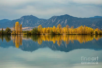 Photograph - Autumn Glow by James BO Insogna