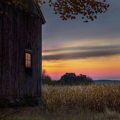 Cornfields Photograph - Autumn Glow Square by Bill Wakeley