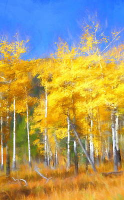 Photograph - Autumn Gold by Christopher Wieck