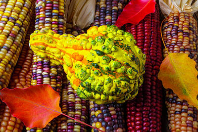 Red Leaves Photograph - Autumn Gourd With Corn by Garry Gay