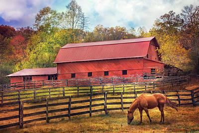 Photograph - Autumn Grazing by Debra and Dave Vanderlaan