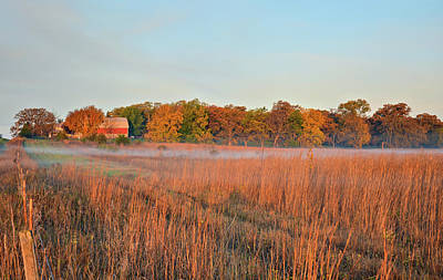 Photograph - Autumn Ground Fog by Bonfire Photography