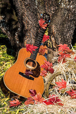 Photograph - Autumn Guitar by Mick Anderson