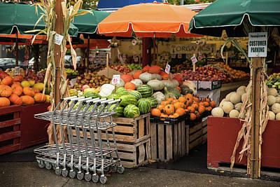 Photograph - Autumn Harvest For Sale by Tom Cochran