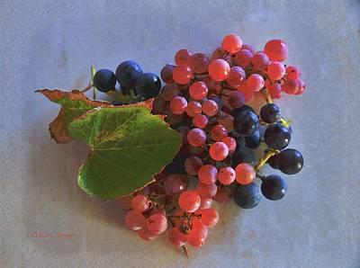 Digital Art - Autumn Harvest Grapes by Kae Cheatham
