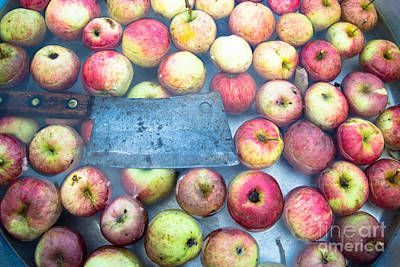 Photograph - Autumn Harvest Of Apples by Glenn Gordon