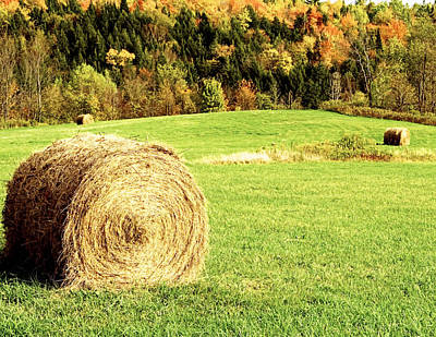 New England Fall Shots Photograph - Autumn Hay Bales  by Sherry  Curry