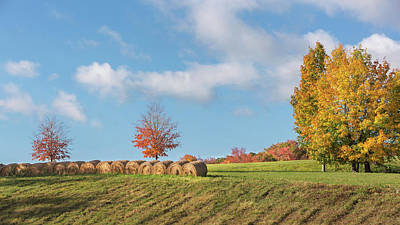 Autumn Hay Art Print by Bill Wakeley