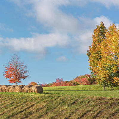Morning Light Photograph - Autumn Hay Square by Bill Wakeley