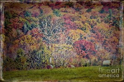 Digital Art - Autumn Hayfield by Kerri Farley