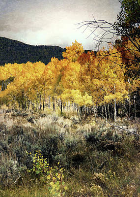 Photograph - Autumn Hike by Jim Hill