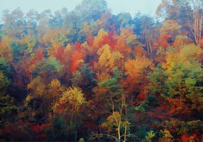Autumn Hill Aglow Art Print by Diane Alexander