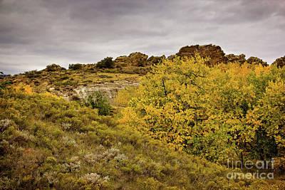 Photograph - Autumn Hillside by Jon Burch Photography