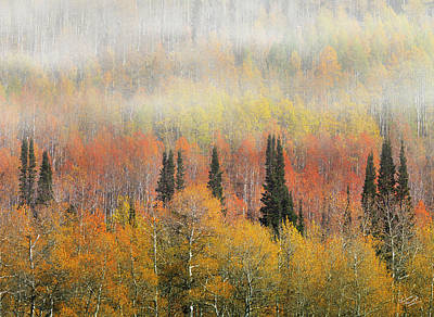 Autumn Hillside Art Print by Leland D Howard