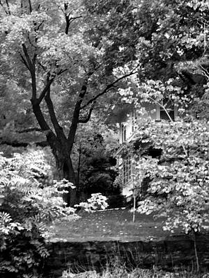 Photograph - Autumn Home Black And White by Steve Karol