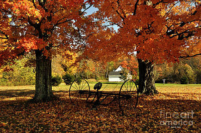 Photograph - Autumn Hush by Diane E Berry