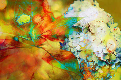 Photograph - Autumn Hydrangea In Gold by Suzanne Powers
