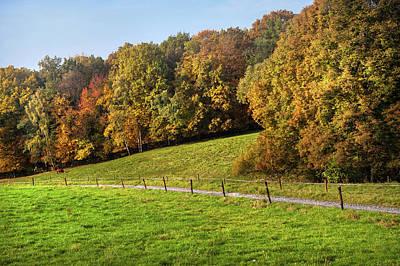 Photograph - Autumn Idyll by Jenny Rainbow
