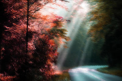 Photograph - Autumn Impression by Mike Eingle