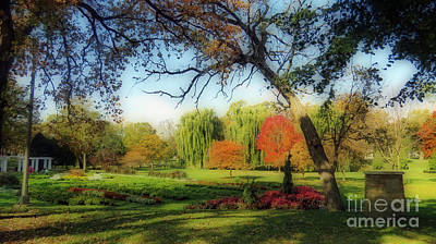 Photograph - Autumn In A Beautiful Park by Kay Novy