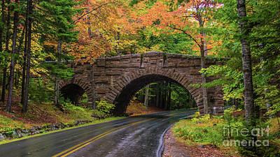 Photograph - Autumn In Acadia by New England Photography