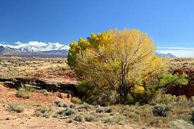 Photograph - Autumn In Arches National Park by Pierre Leclerc Photography