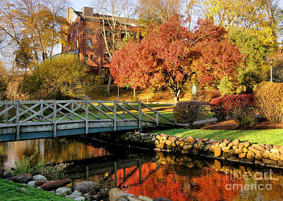 Photograph - Autumn In Brewster Gardens by Janice Drew