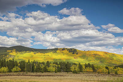 Photograph - Autumn In Colorado by Kunal Mehra