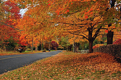 Photograph - Autumn In Connecticut by Ben Prepelka