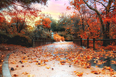 Autumn In Discovery Lake Art Print
