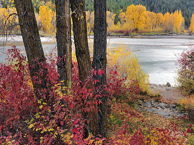 Photograph - Autumn In East Idaho by Leland D Howard