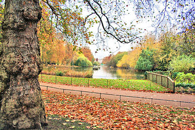 Photograph - Autumn In Green Park by Gordon Elwell