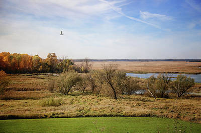 Photograph - Autumn In Horicon Marsh 1 by Susan McMenamin