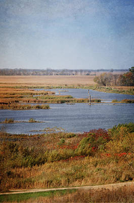 Photograph - Autumn In Horicon Marsh 2 by Susan McMenamin