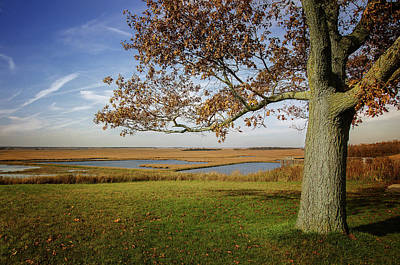 Photograph - Autumn In Horicon Marsh 3 by Susan McMenamin